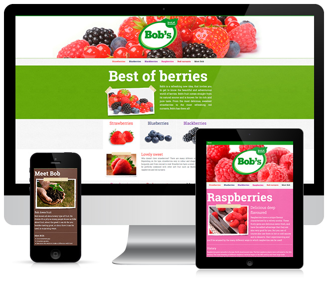 Responsive webdesign voor Best of Berries