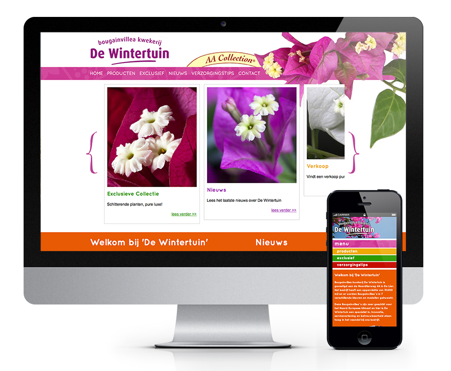 Website en aparte mobiele website